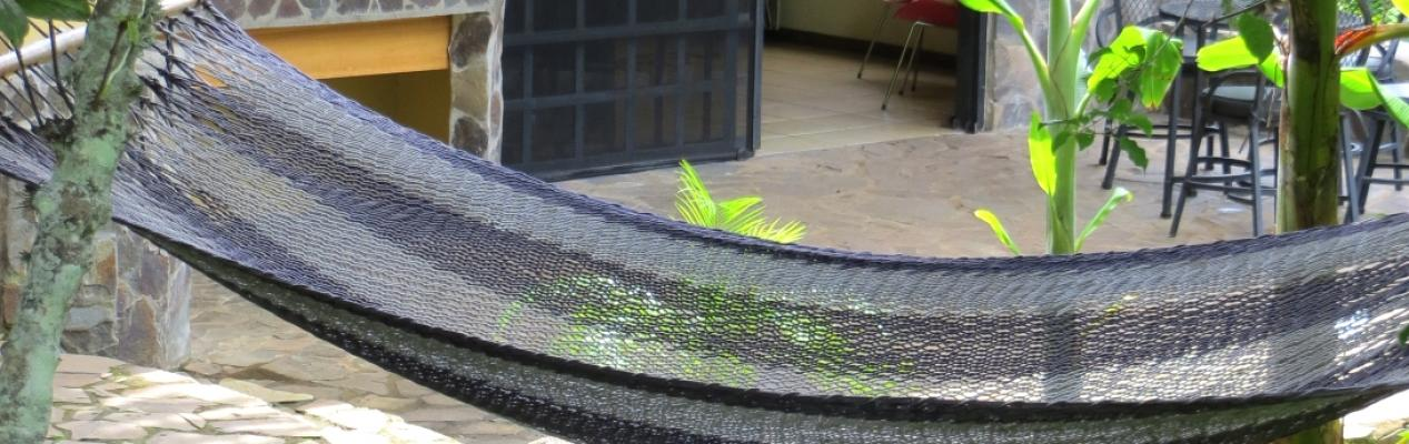 hammockmariposa